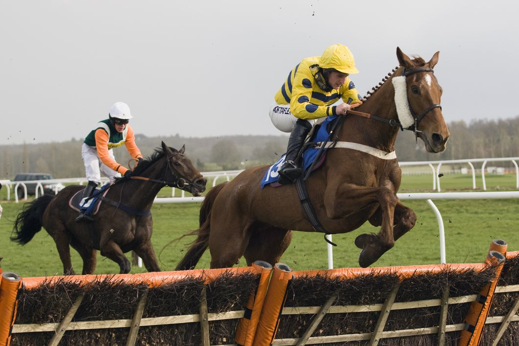 Newbury Horse Racing Tips | The Tipster League
